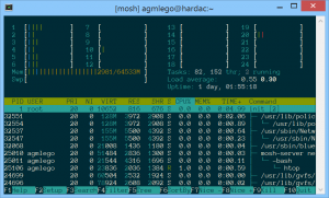 A screenshot of a programm called htop, running on the new server and showing minimal resource utilization under load